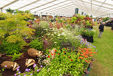 HAMPTON COURT FLOWER SHOW | 7 - 9 JULY (3 DAYS) | £219 PER PERSON